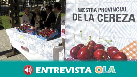 La VII Muestra de la Cereza de Jaén da a conocer el valor del sector agroalimentario de la provincia