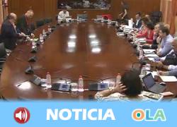 Agentes sociales inician la ronda de comparecencias en el Parlamento sobre el Presupuesto de la Junta para 2019