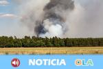 El sindicato CCOO defiende un modelo público de los operativos de incendios forestales que atienda a la prevención, extinción y rehabilitación