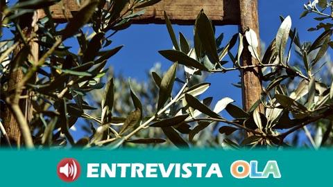 El sector olivarero sale  a la calle contra los bajos precios del aceite