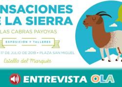 El programa 'Sensaciones de la Sierra: Las cabras payoyas'  pone en valor  el patrimonio cultural y gastronómico de la Sierra de Cádiz