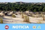 Un 14 de agosto de 1969 el Consejo de Ministros de entonces creó el Parque Nacional de Doñana