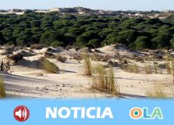 Doñana cumple 50 años de su declaración como Parque Nacional por parte del Consejo de Ministros