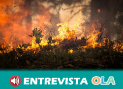 La organización agrario COAG reclama la intervención natural del ganado en los montes públicos para reducir las posibilidades de incendios
