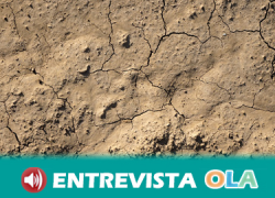 Una de las medidas para reducir el impacto de la sequía es aminorar el estrés hídrico mediante la reducción de la superficie destinada a regadíos