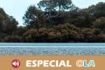 La autovía entre Huelva y Cádiz enfrenta al tejido empresarial y a organizaciones ecologistas
