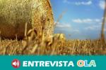 El proyecto europeo 'Diverfarming' busca aumentar la calidad de los cultivos consumiendo menos recursos