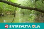El Corredor Verde del Río Guadiamar conserva un interesante patrimonio monumental, como termas y canteras romanas o iglesias medievales