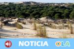 El Parque Nacional de Doñana cumple hoy 50 años