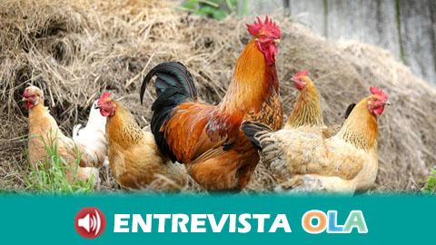 La Universidad de Huelva celebra la jornada 'Ecoaldeas. La resiliencia comunitaria frente a la crisis ecosociocultural global'