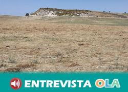La pedanía Mesas de Asta, en Jerez de la Frontera, esconde bajo sus tierras la antigua ciudad de Asta Regia