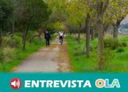 La Vía Verde de la Campiña ofrece una icónica estampa de girasoles y cultivos cerealistas entre olivares a su paso por el municipio sevillano de Marchena