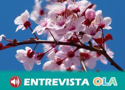 La Ruta del Almendro en Flor propone un recorrido por diez localidades almerienses y unas Jornadas Gastronómicas con la almendra como plato principal