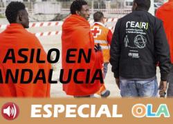 El perfil del refugiado en Andalucía es el de jóvenes que no querían dejar sus hogares pero se han visto obligados porque sus vidas corrían peligro