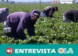 El trabajo en la campaña de frutos rojos de Huelva es abusivo, precario y falto de garantías y control de las jornadas laborales