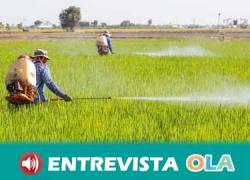 El mito de que Costa Rica es un país «maravilla» hunde sus raíces en los intereses económicos