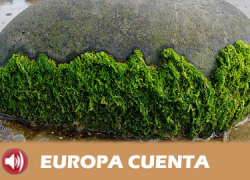 Las iniciativas europeas que se desarrollan en Andalucía, especialmente en Almería, ponen a nuestra comunidad como referente mundial en biotecnología de vanguardia