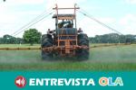 El catedrático de Economía Aplicada, Manuel Delgado, considera que la diversificación de la agricultura es clave en una situación de vulnerabilidad económica