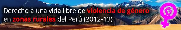 Banner Proyecto de Perú 2012