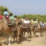 'Mundo Finito – No queremos vivir en Marte' nos presenta alternativas de turismo sostenible gracias a las empresas andaluzas Aires Africanos y Andalucía Geographic